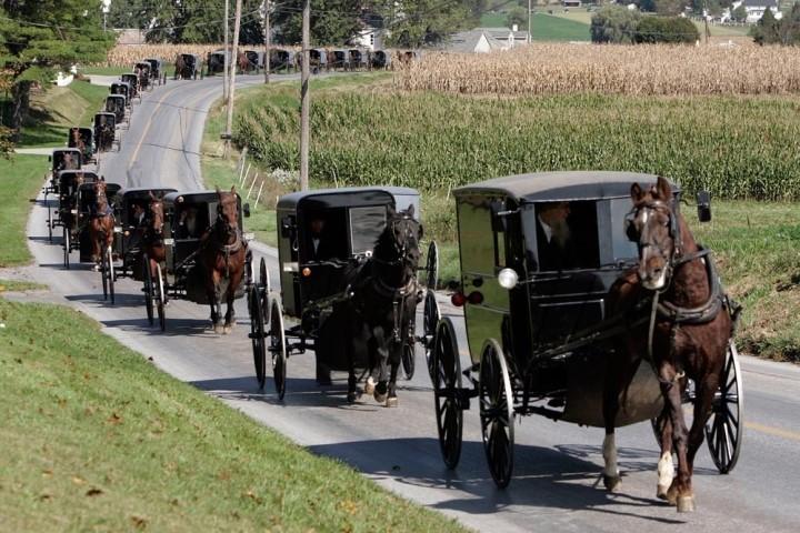 amish-funeral.jpg