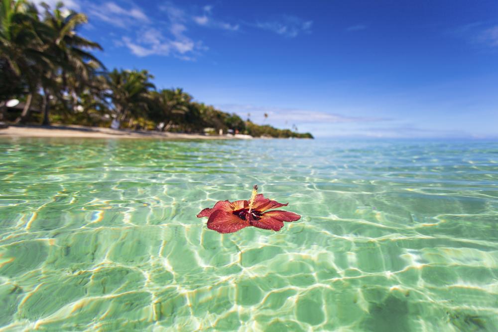 이색 해외 여행지 추천:피지 자유 여행,피지 여행 코스 Top 10#피지에어비앤비