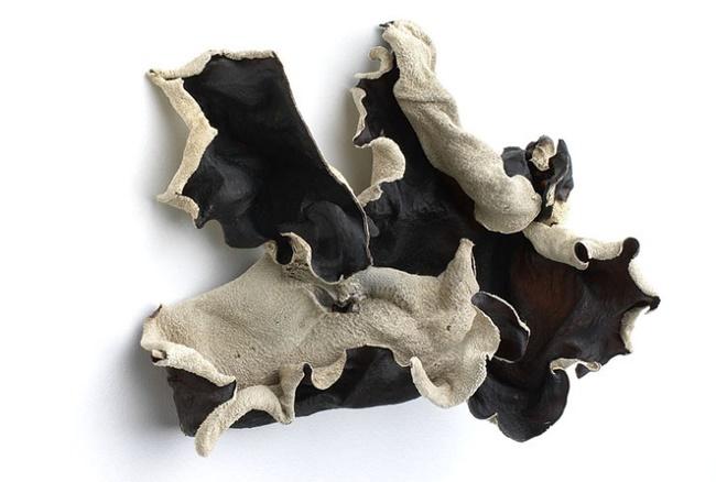 고혈압을 치료하는 석이버섯