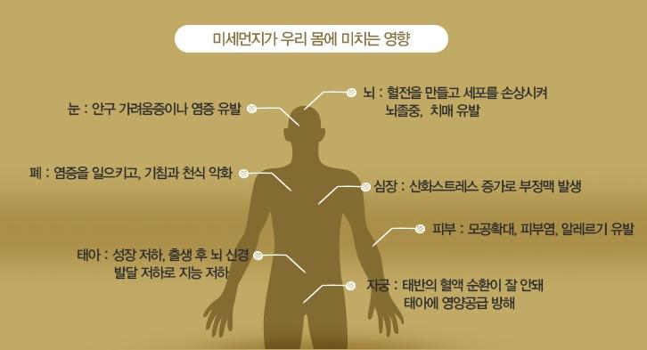[인덕원 헬스장 비앤핏] 겨울철 미세먼지 어떻게 대처해야하나!!
