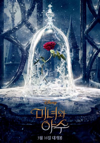 마법 같은 사랑이 이루어지는 날~ 발렌타인 데이 장미꽃 이벤트♥