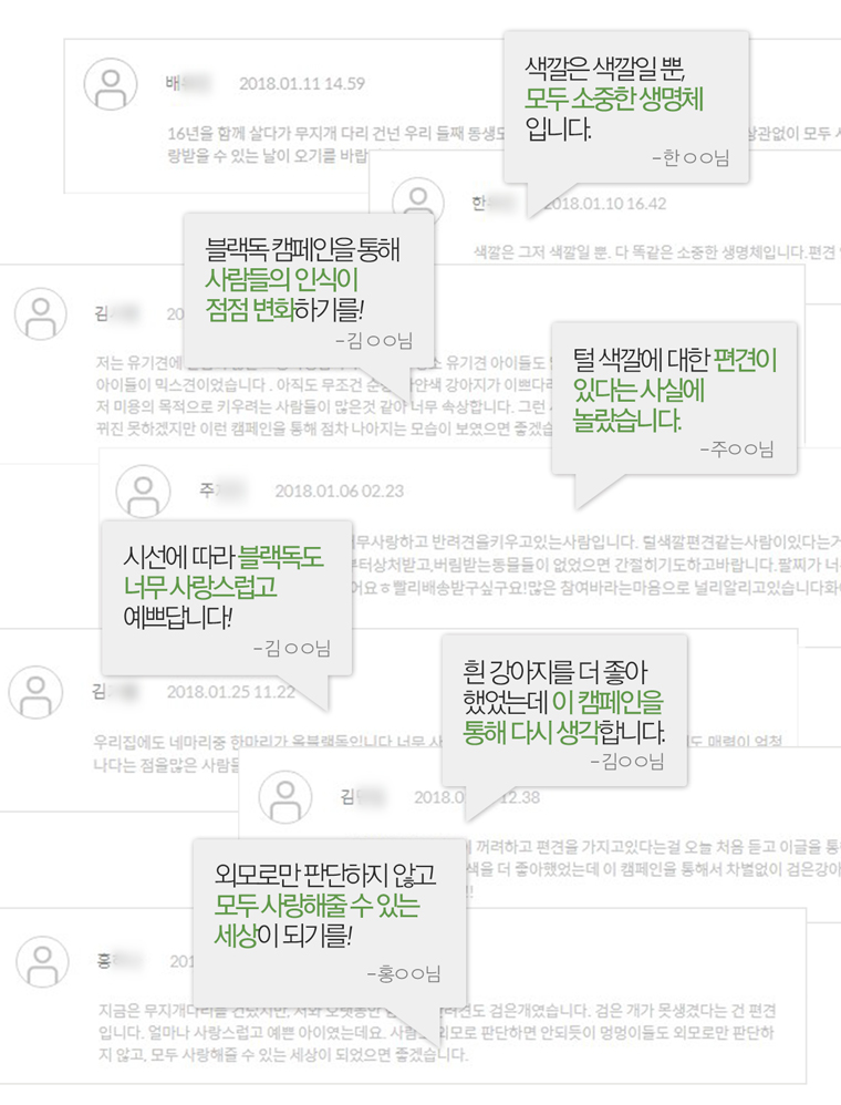 검은 개 입양 프로젝트 [블랙독 캠페인 Part Ⅱ]
