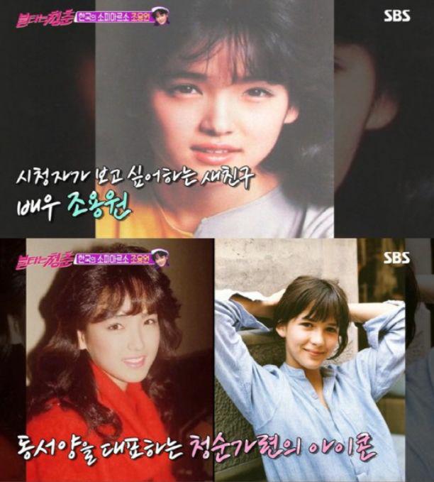 '한국의 소피마르소' 조용원 근황